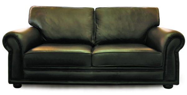 2 Seater Leather Couch